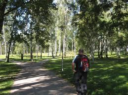 Esplanadi Park Image
