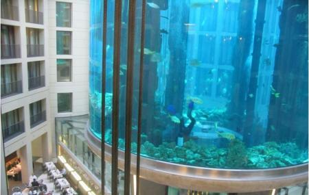 Radisson Blu Hotel Berlin Image