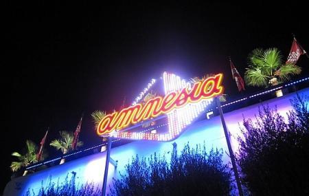 Club Amnesia Image