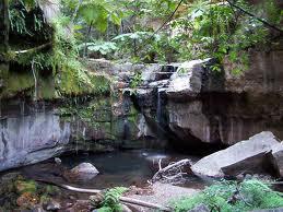 Carnarvon National Park Image
