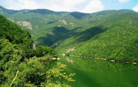 Vodno Mountain Image