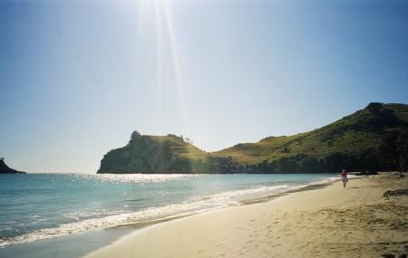 Hahei Beach Image