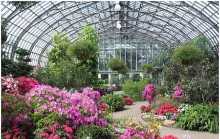 Garfield Park Conservatory Lincoln Park Conservatory Image