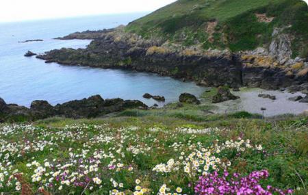 Southern Coastline Image