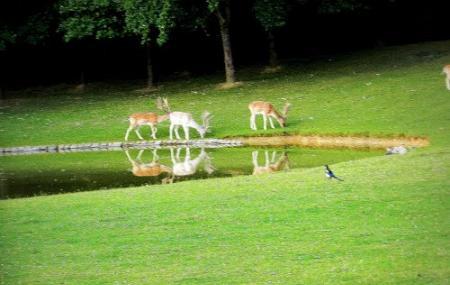 Gayeulles Park Image