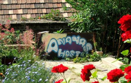 Ananas Hostel Image