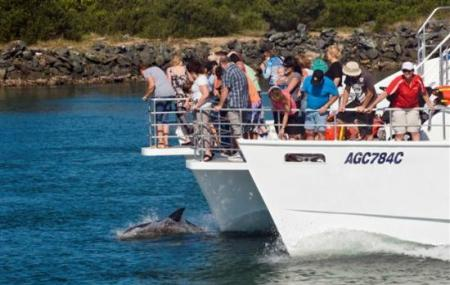 Port Venture Junk Cruise Image