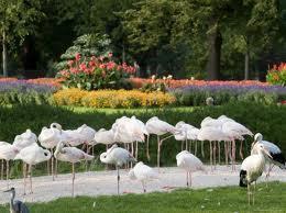 Wilhelma Zoo And Botanical Garden Image