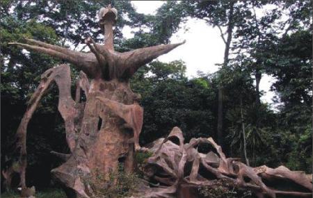 Osun Sacred Forest Image