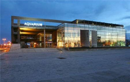 The Aquarium Image