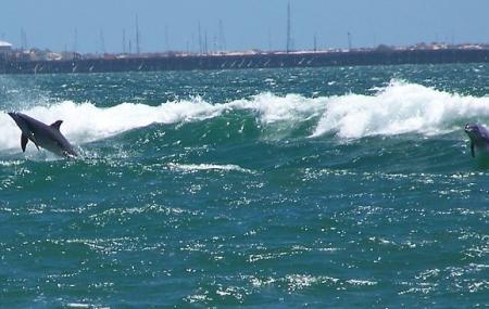 Koombana Beach Image
