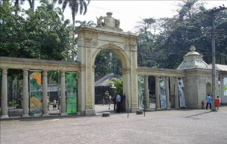 Rio Zoo Image