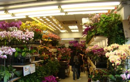 Flower Market Image