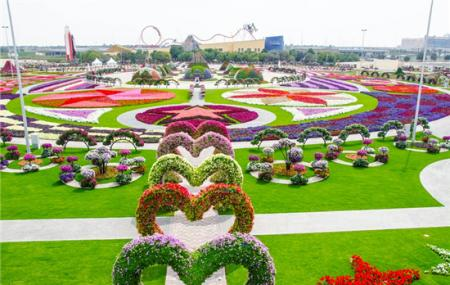 Dubai Miracle Garden Dubai Ticket Price Timings Address Triphobo
