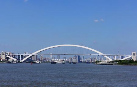 Lupu Bridge Image