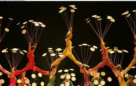 The Shanghai Acrobatic Troupe Image