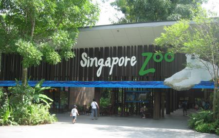 Singapore Zoo Image