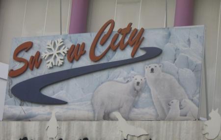 Snow City Image