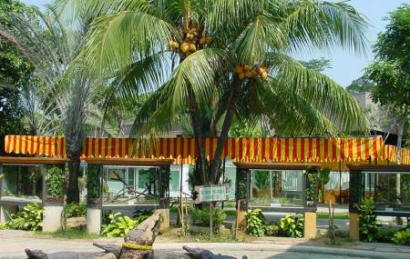 Jurong Reptile Park Image