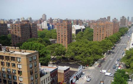 Harlem's In Image