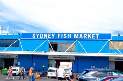 Sydney Fish Market Image