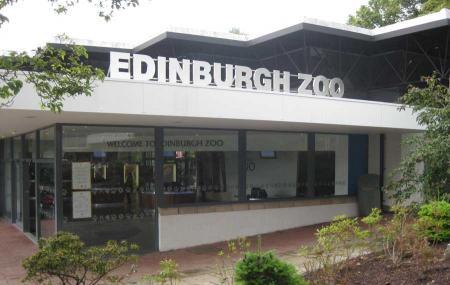 Edinburgh Zoo Image