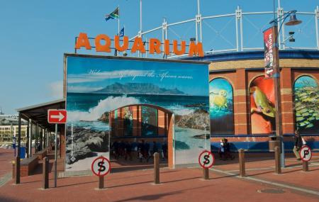 Two Oceans Aquarium Image