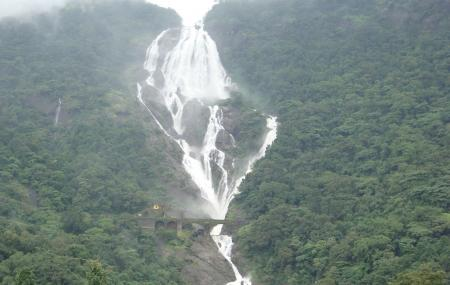 Dudhsagar Waterfall Image