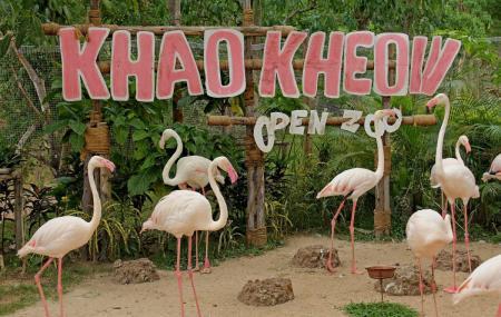 Khao Kheow Open Zoo Image