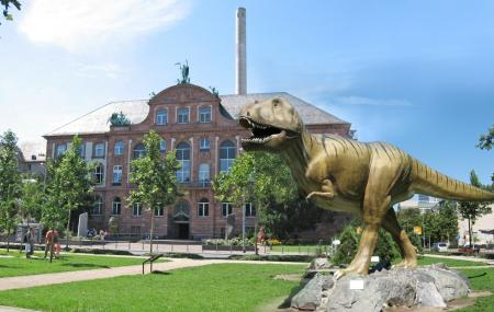 The Senckenberg Museum Of Natural History, Frankfurt