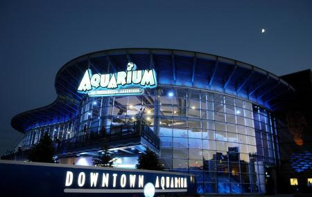Downtown Aquarium Image