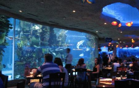 Downtown Aquarium Houston Image