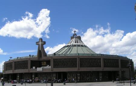 Basilica Of Our Lady Of Guadalupe Image