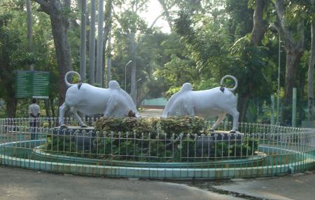 Pondicherry Botanical Garden Image
