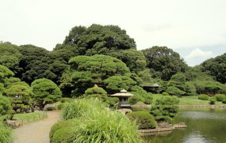 Shinjuku Gyoen National Garden Image