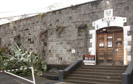 Napier Prison Tours Image