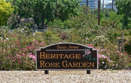 Heritage Rose Garden Image