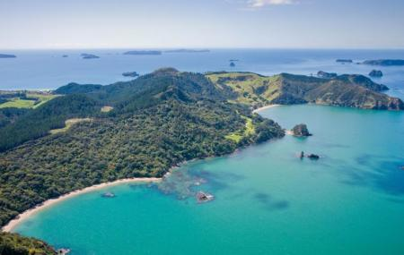 Dive Zone Whitianga Image
