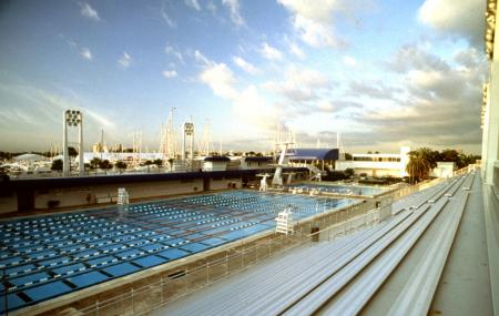 International Swimming Hall Of Fame Image