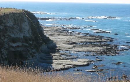 Peninsula Walkway Image