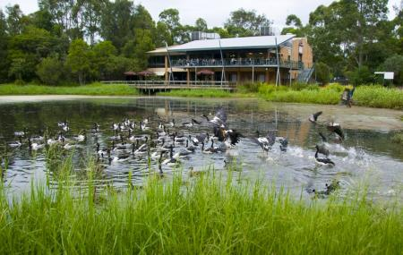 Hunter Wetlands Centre Image