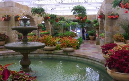 Royal Tasmanian Botanical Gardens Image