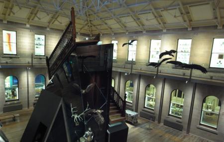 Tasmanian Museum And Art  Gallery Image