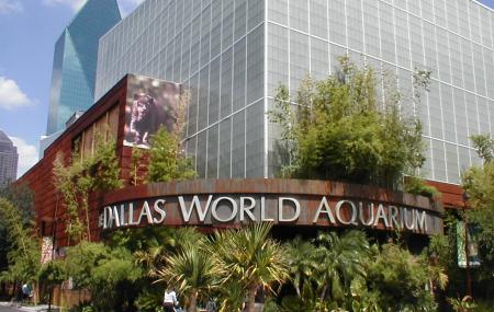 Dallas World Aquarium Image