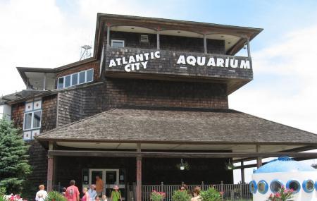 Atlantic City Aquarium Image