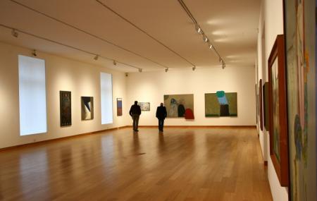 Museo Superior De Bella Artes Evita Image