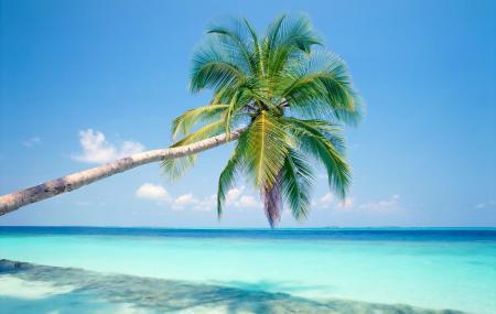 Varadero Beach Image