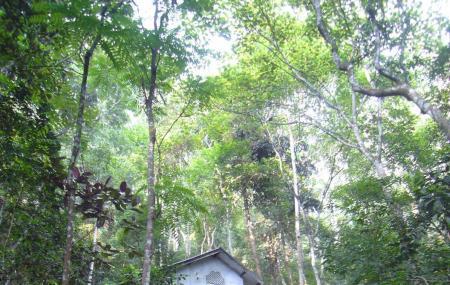 Kandy Monasteries Image