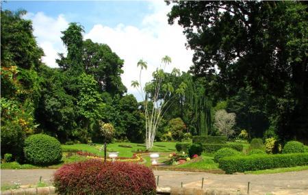 Royal Botanic Gardens Image