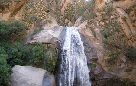 Rio Colorado Image